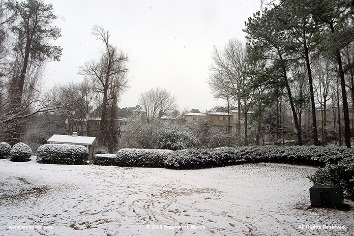 19-January-2008-Snow-Day--21.jpg