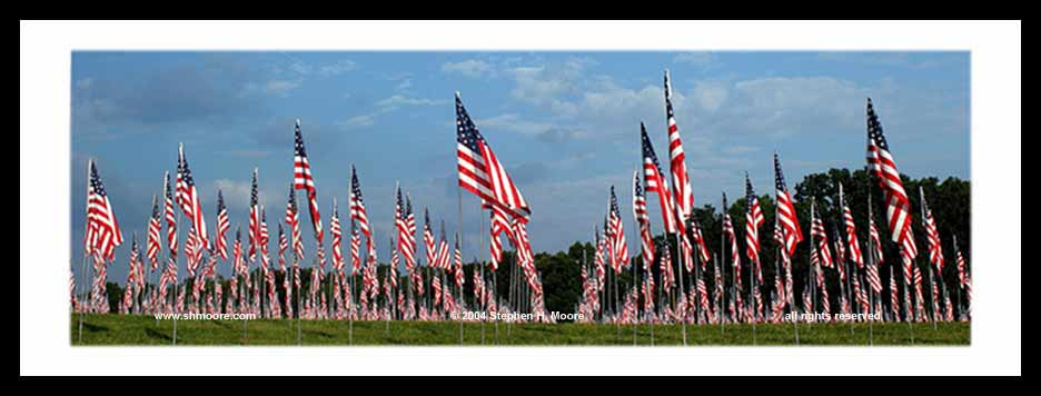 Field_of_Flags_2.jpg